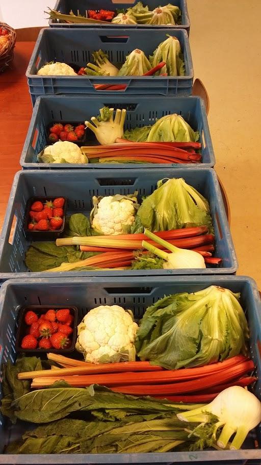 Voorbeeld 1 groentepakket