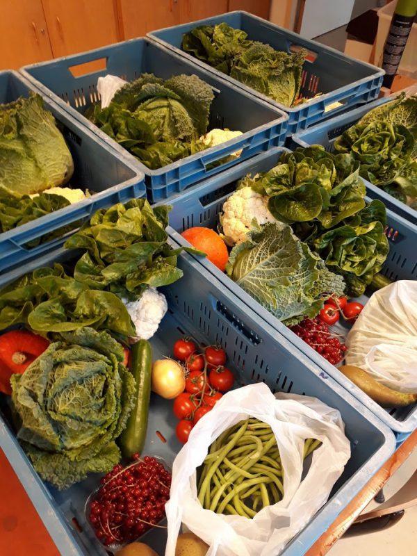 Voorbeeld 3 groentepakket