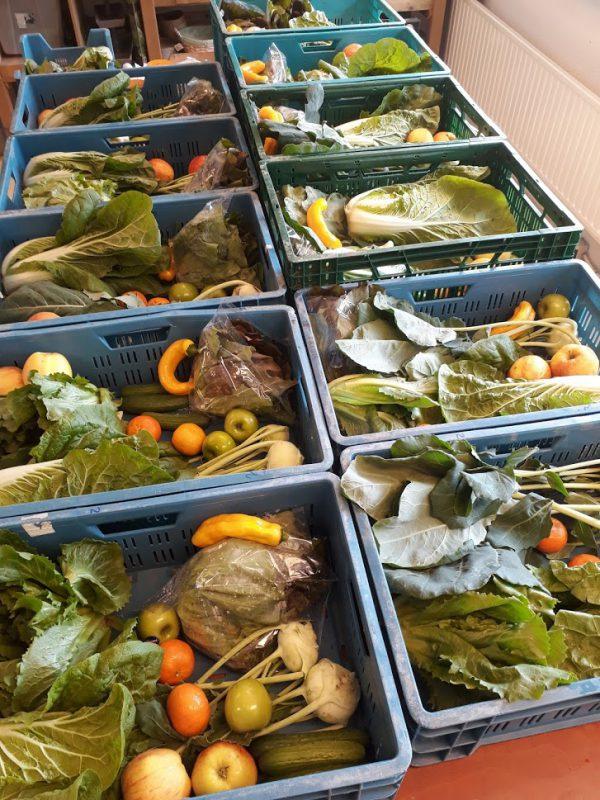 Voorbeeld 2 groentepakket