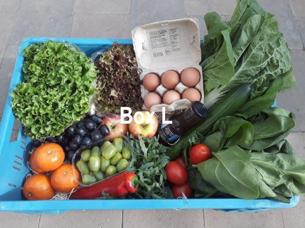 Voorbeeld 4 groente/fruit bezorgbox