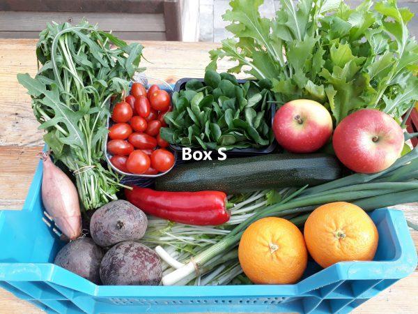 Voorbeeld 3 groente/fruit bezorgbox